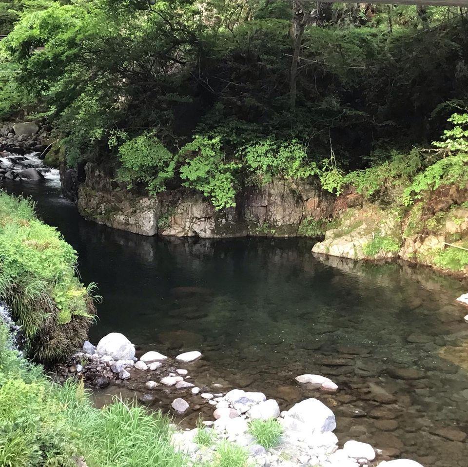 【渓流釣りができるコテージ】