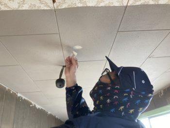 【間仕切り壁の解体部を塗装】