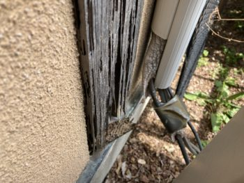 【窓枠のニス塗装と白蟻被害】